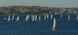 etchells at a regatta